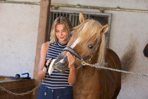 Schmusen beim Putzen finden viele Pferde toll.