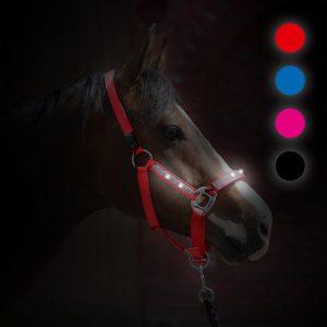 Das praktische LED-Leuchthalfter in Kieffer-Qualität, welches exklusiv über Reinecke Equestrian erhältlich ist, leistet gute Dienste im Dunkeln und macht z.B. beim Führen mit heller Leuchtkraft auf Euch aufmerksam.