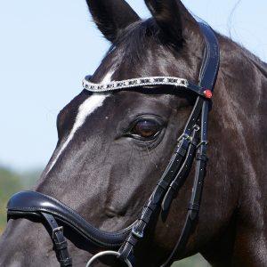 Achte bitte genauestens darauf, dass die Zäumung passt und Du Dein Pferd in keinster Weise negativ beeinträchtigst!